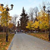Осень в парке :: ...Настя ...