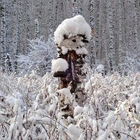 Леший :: Геннадий Ячменев
