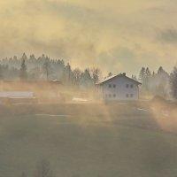 Туманнын утром :: Вальтер Дюк