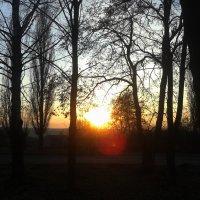 Осенний пейзаж :: Юлия Закопайло