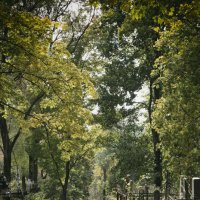 Тихвинское кладбище, Смоленск :: PersONA Incognito