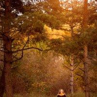 Осенний лес :: Aisylu (Айсылу) Ahmadieva