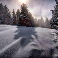 Дыхание зимы :: Владимир Амангалиев