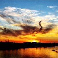 Полёт жар птицы над рекой :: Leonid Tabakov