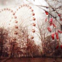 Ноябрь :: Инна Малявина