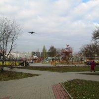 Осенний сон каруселей :: Самохвалова Зинаида