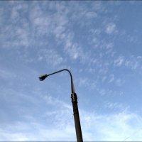 ...А мимо проплывали лёгкие пёрышки облаков :: Нина Корешкова