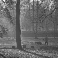 Утро в городском парке :: Николай Н