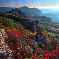 Горят багрянцем осени холмы :: viton
