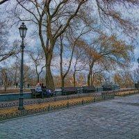 Ноябрь на Приморском бульваре. :: Вахтанг Хантадзе