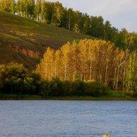 Осенний вечер. :: nadyasilyuk Вознюк