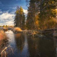 Ноябрьское солнышко... :: Roman Lunin