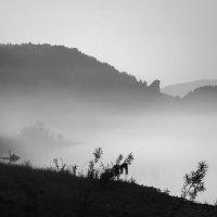 Туманное утро :: Галина Щербакова