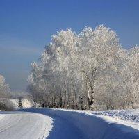 Зимняя дорога. :: Ирина Королева