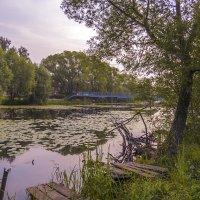 Утро на реке :: Сергей Цветков