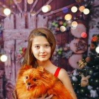 Жёлтая собака! :: Ольга Егорова