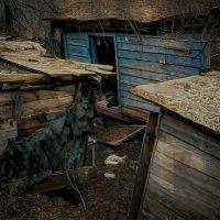 Старые дворики... :: alecs tyalin