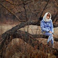 Ноябрь :: Вера Сафонова