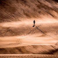 Из серии люди в песочнице :: Konstantin Rohn