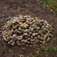 Сад камней строят? :: Андрей Лукьянов