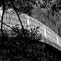 Мост желаний :: олег свирский