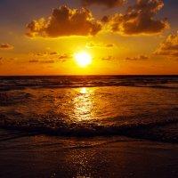 На закате дня ..... :: Aleks Ben Israel