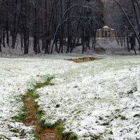 Царицыно 21 ноября :: Михаил Бибичков
