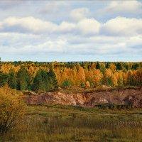 Краски осенние, полуденные... :: Александр Никитинский