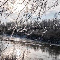 Мороз и солнце, день чудесный! :: Elena Sartakova