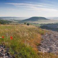 Утро в горах :: Алина Шостик