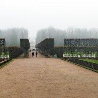 Геометрия в тумане :: Варвара