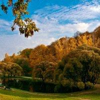 Рисует Осень нам Картины :: Vera Ostroumova