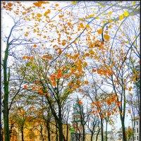 В городе осень... :: Юрий Гординский