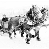 зима :: Jiří Valiska