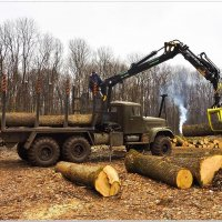 Погрузка леса :: Евгений Кочуров