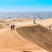 Из серии в большой песочнице :: Konstantin Rohn