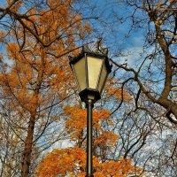 Фонарь и осень... :: Sergey Gordoff