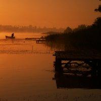 Оранжевое утро :: Aleksey12