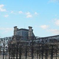 Зимний  Париж :: Виталий Селиванов