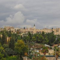 Панорама Иерусалима :: Alla S.
