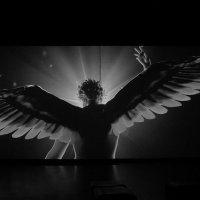 Ангел или Демон ... :: Лариса Корженевская