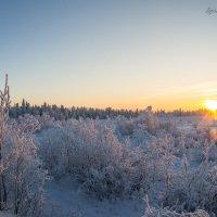 2 часа дня на севере :: 30e30 (Игорь) Васильков