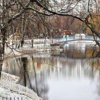 Пока льда нет и уточки не улетели. :: Татьяна Помогалова