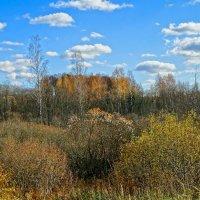 Тёплый октябрь :: Милешкин Владимир Алексеевич