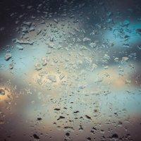 wet :: A.M. Photo