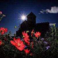 Цветы монастырского сада… :: Roman Mordashev