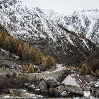 Зима близко. :: Mikhail Kuznetsov