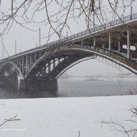 Зима вступает в права! :: Горелов Дмитрий