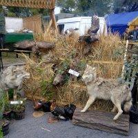 Уголок любителей охоты :: Нина Корешкова