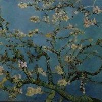 На выставке Ван Гога в Ростове-на-Дону (Компьютерное искусство) :: татьяна